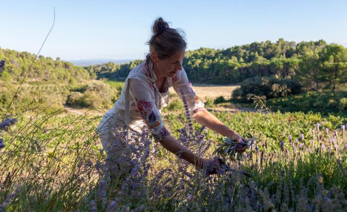 Philippa Crane picking herbs in the garden