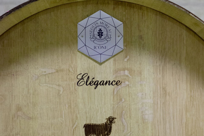 Barrel details at Hegarty Chamans winery