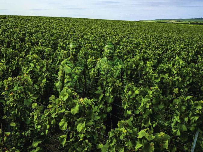 Ruinart: Hiding in the vineyards with the Ruinart cellar master Frédéric Panaïotis