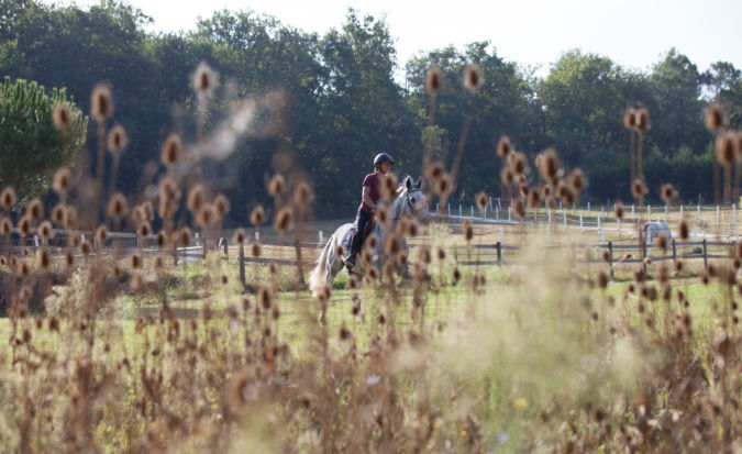 Pauline Vauthier riding a horse at Chateau Ausone