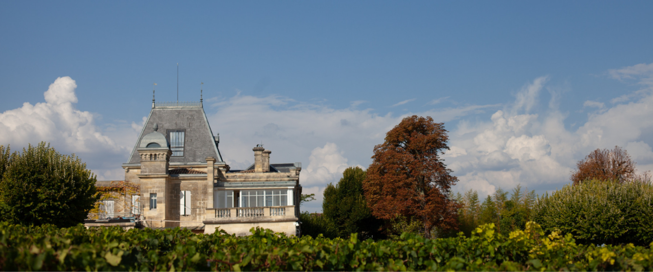 Château Ausone and the Borrdeaux Skyline