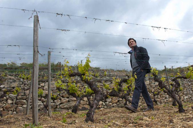 Spanish winemaker Rafael Palacios