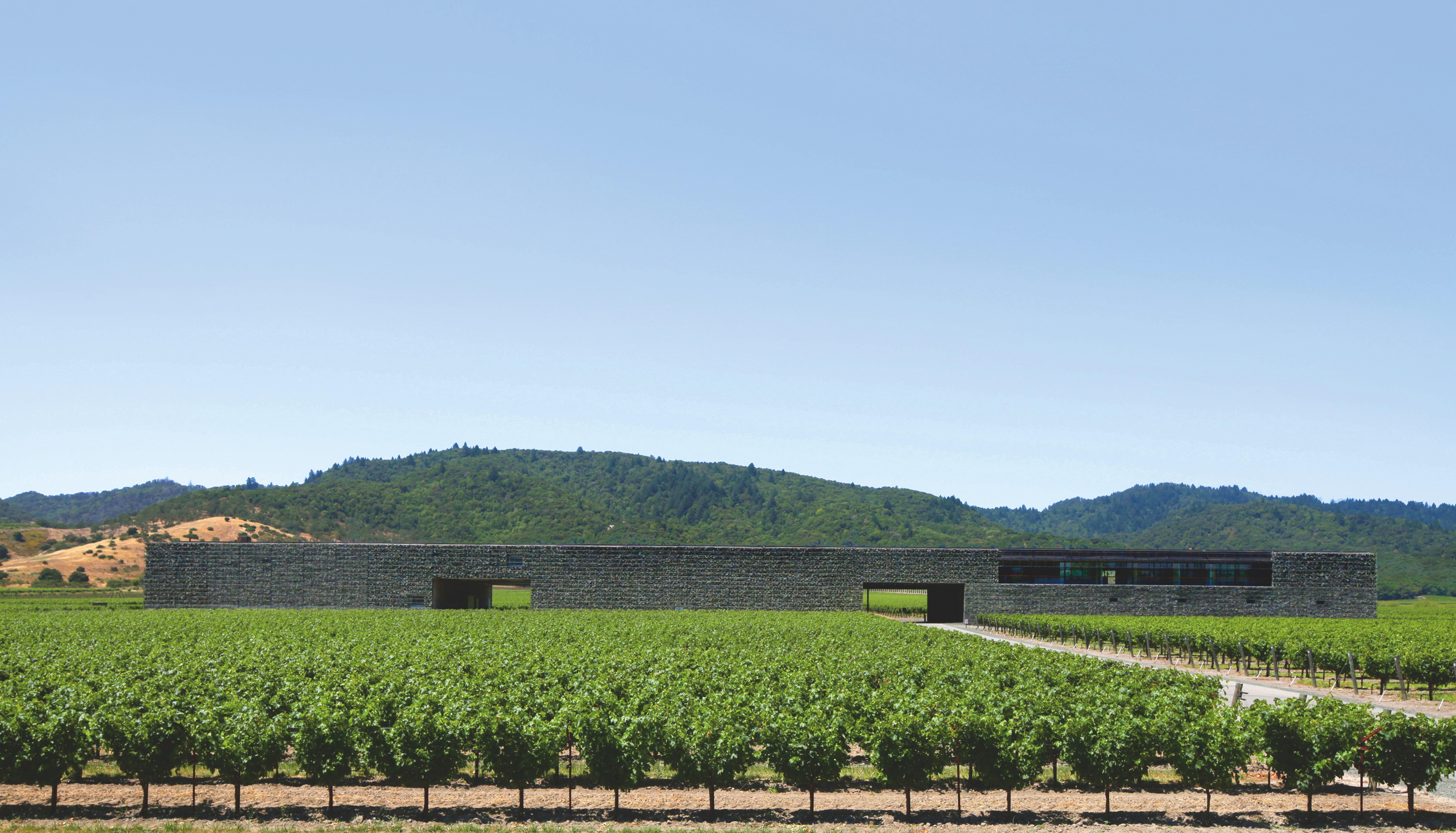 California's Dominus Estate by Jacques Herzog and Pierre de Meuron