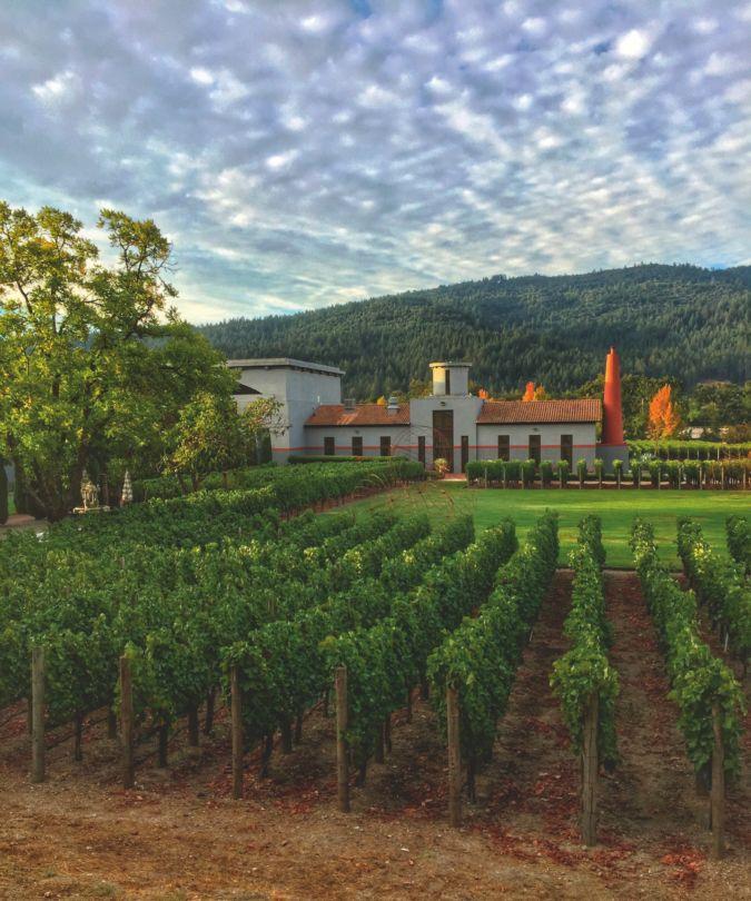 Clos Pegase vineyard in Napa Valley