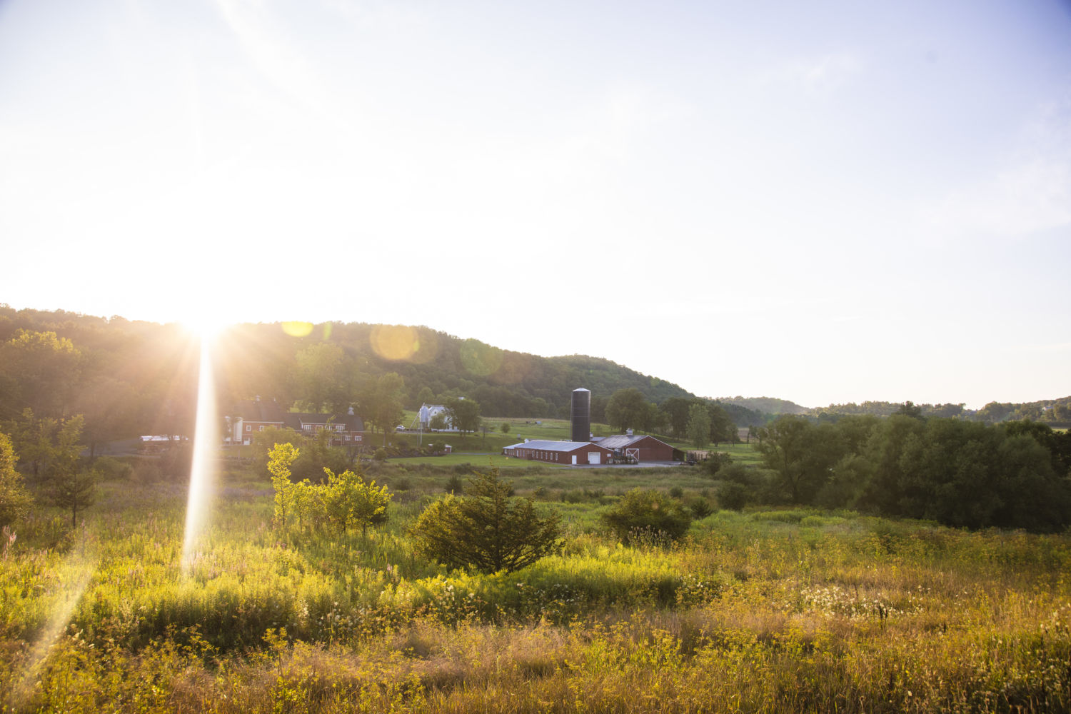 Fields surrounding WhistlePig American whiskey distillery