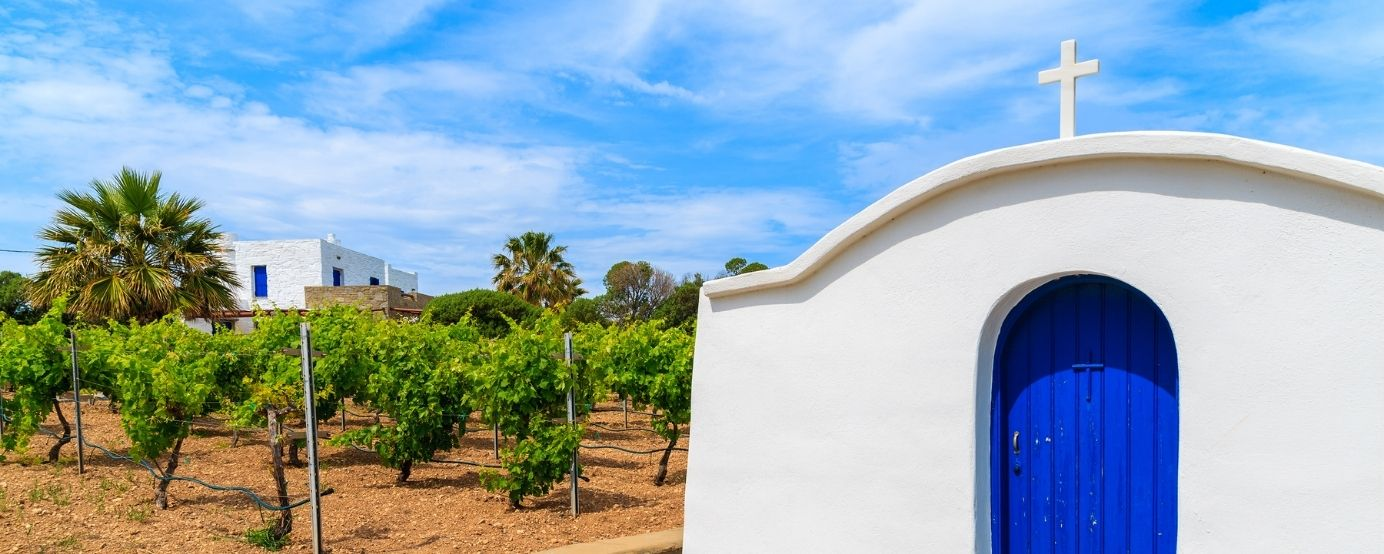 a vineyard with a Greek church next to it