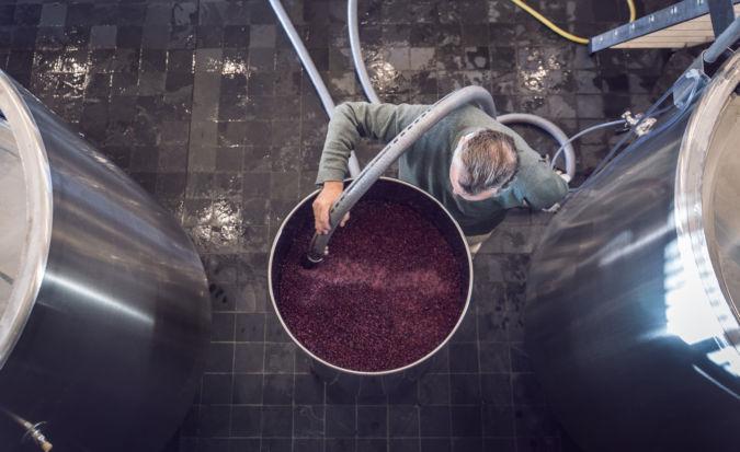 Stainless steel vat of fermenting wine