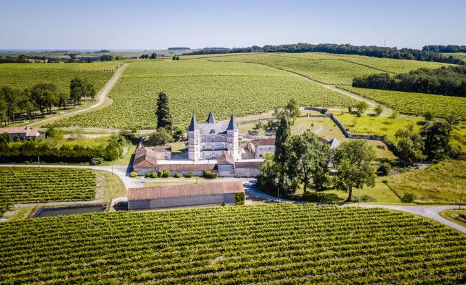 Cognac Frapin's vineyard