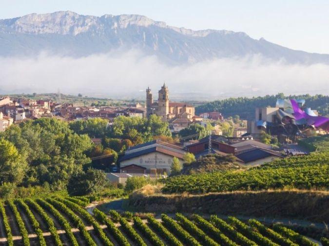 World-class Riojas – La Rioja region