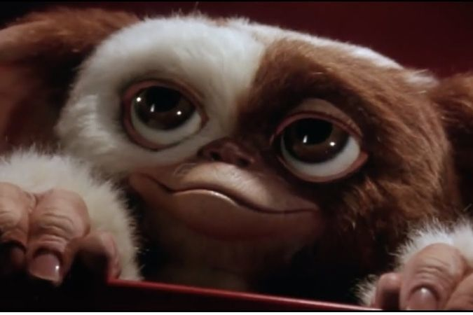 Movies from the 1980s – Memorable Movies and Malts - Gizmo, the lovable Mogwai from Gremlins