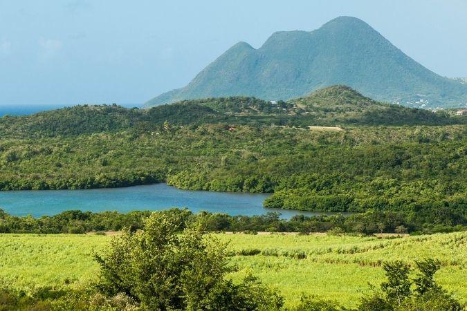 Martinique – premium rum