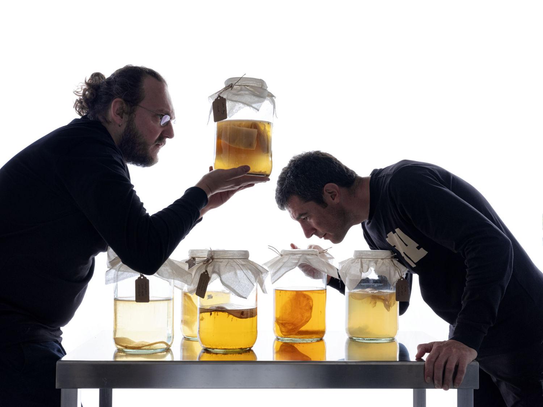 Ramón and Dani Fermenting unusual drinks