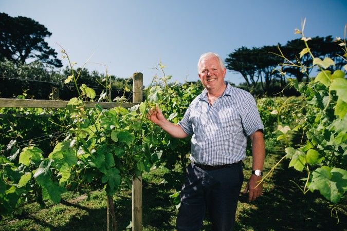 Robert Francis at Holy Vale Vineyard in the Scilly Isles
