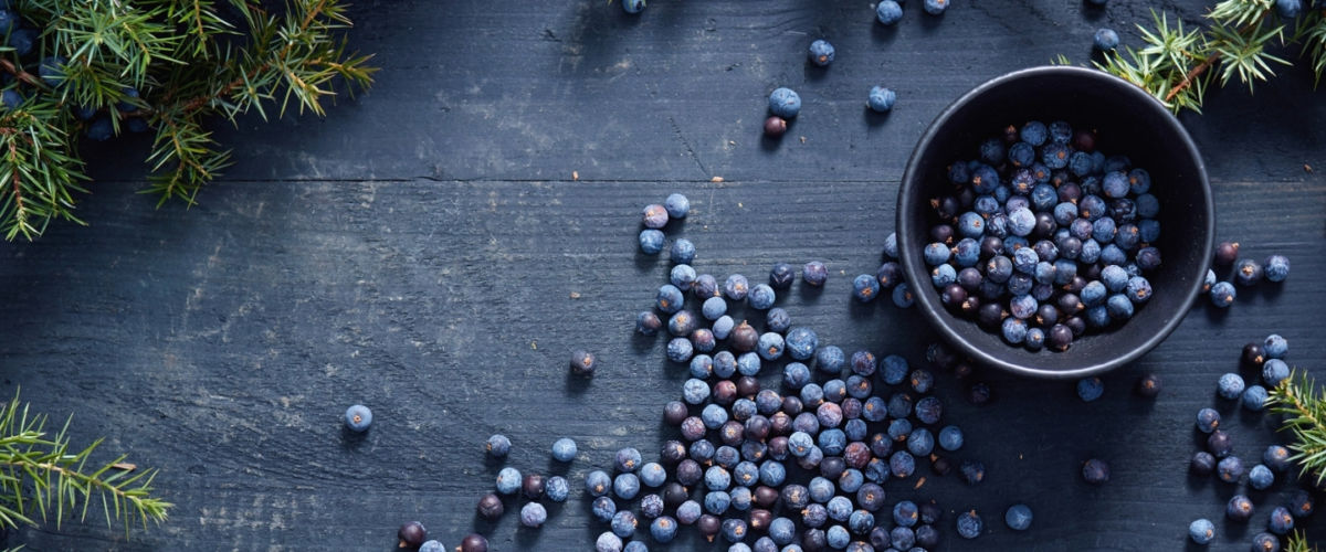 Juniper berries in a black bowl and spread out on a wooden table