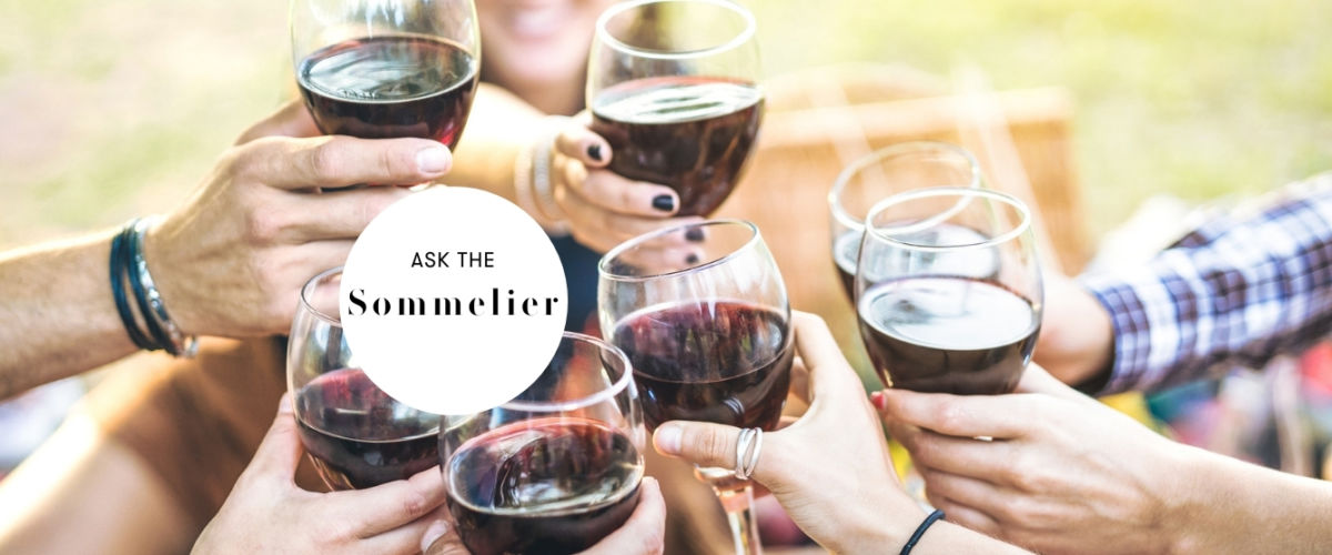 glasses of red wine for picnic