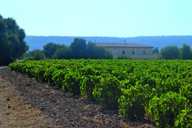 Huset fra Vignolo vingaarden