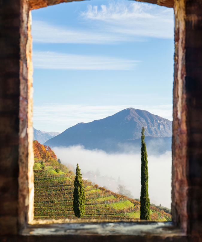 Egle Berruti Window with a view