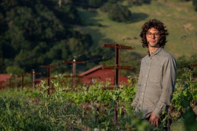 Nick Gislason - cult wine