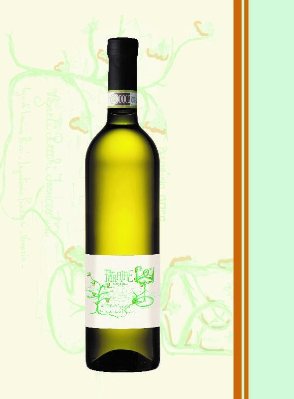 white wine from the marche region