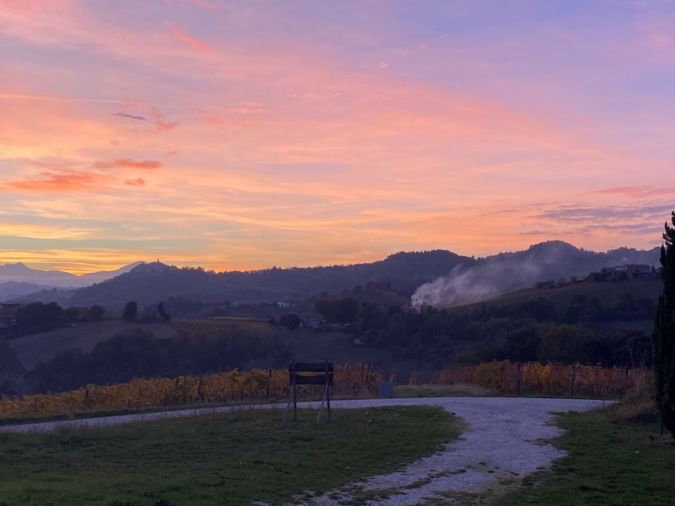 Marche wine region at sunset