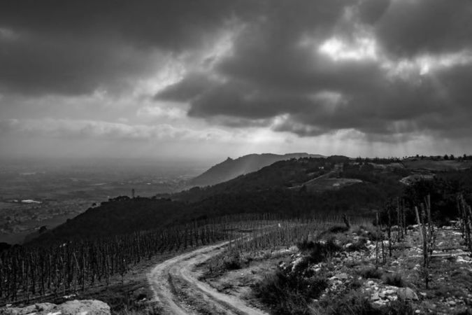 Michael Sager photo of The view from Eglise St-Pierre, atop of the hailed Chaillot vineyard in Cornas