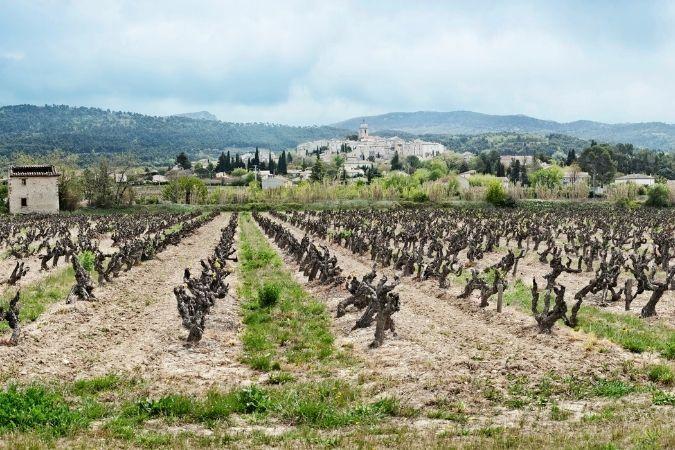 Côtes du Rhône Villages – Tour de France