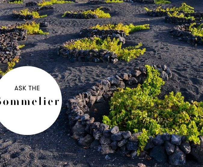 ask the sommelier minerality in wine