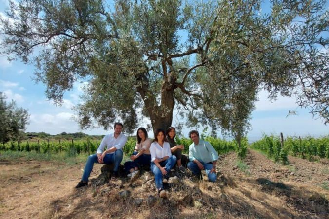 Gaja winemakers