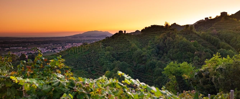 farra di soglio hills with prosecco vineyards in veneto, italy