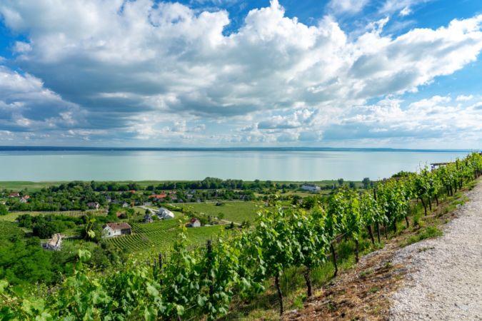 Hungarian landscape