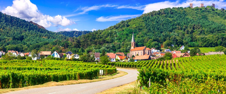 alsace vineyard