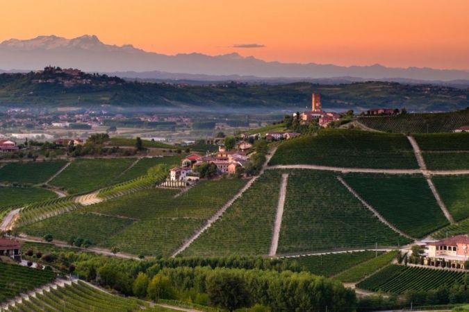 Piedmont – indigenous grapes