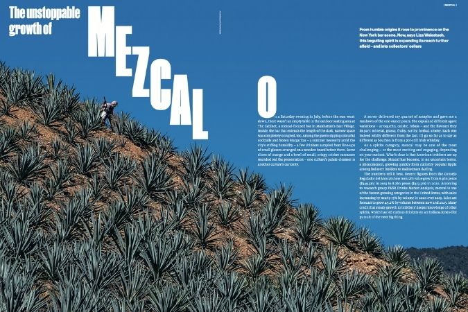 Mezcal – The Collection
