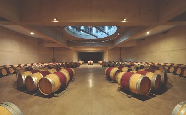 Barrel room Seña Chile